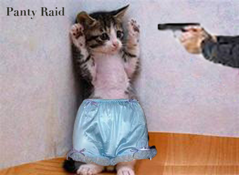 Panty-Raid